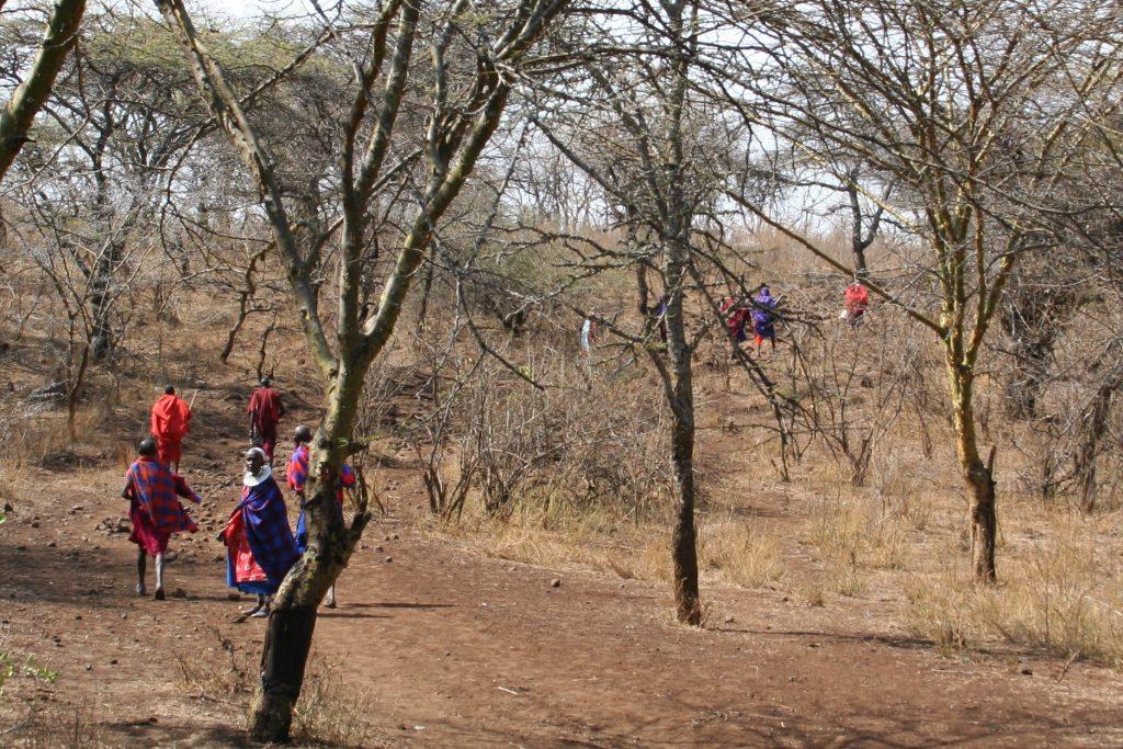 Balade Maasaï Isoitok