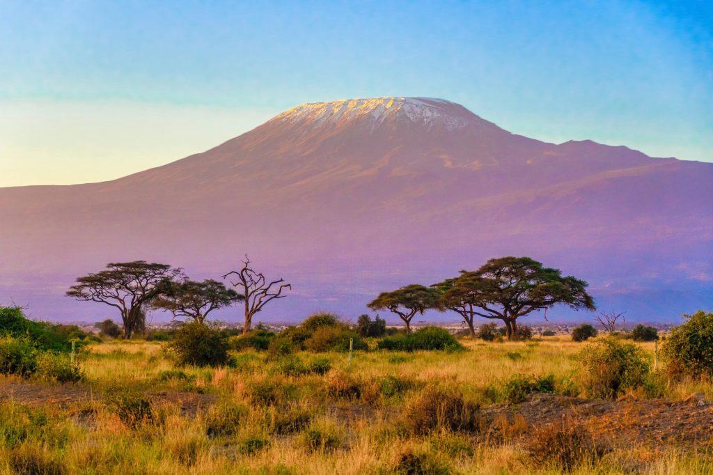 La Tanzanie peut être visitée toute l'année et le climat varie considérablement selon l'endroit où vous vous trouvez. Lorsque vous vous demandez quel est le meilleur moment pour venir visiter la Tanzanie, cela dépendra de ce que vous avez envie de vivre. Généralement, la principale saison des pluies dure en mars, avril et mai. Vous aurez une averse tropicale ou deux dans la journée plus importante si vous êtes près de la côte et des îles. L'humidité pendant ces mois est élevée et les températures sont autour des 30°C. La deuxième saison des pluies, considérée comme la saison des pluies courtes, a lieu en novembre et décembre avec de très légères averses et des températures très agréables. La saison sèche s'étale de juin à octobre avec des températures hautes dans les parcs (30°C et plus).