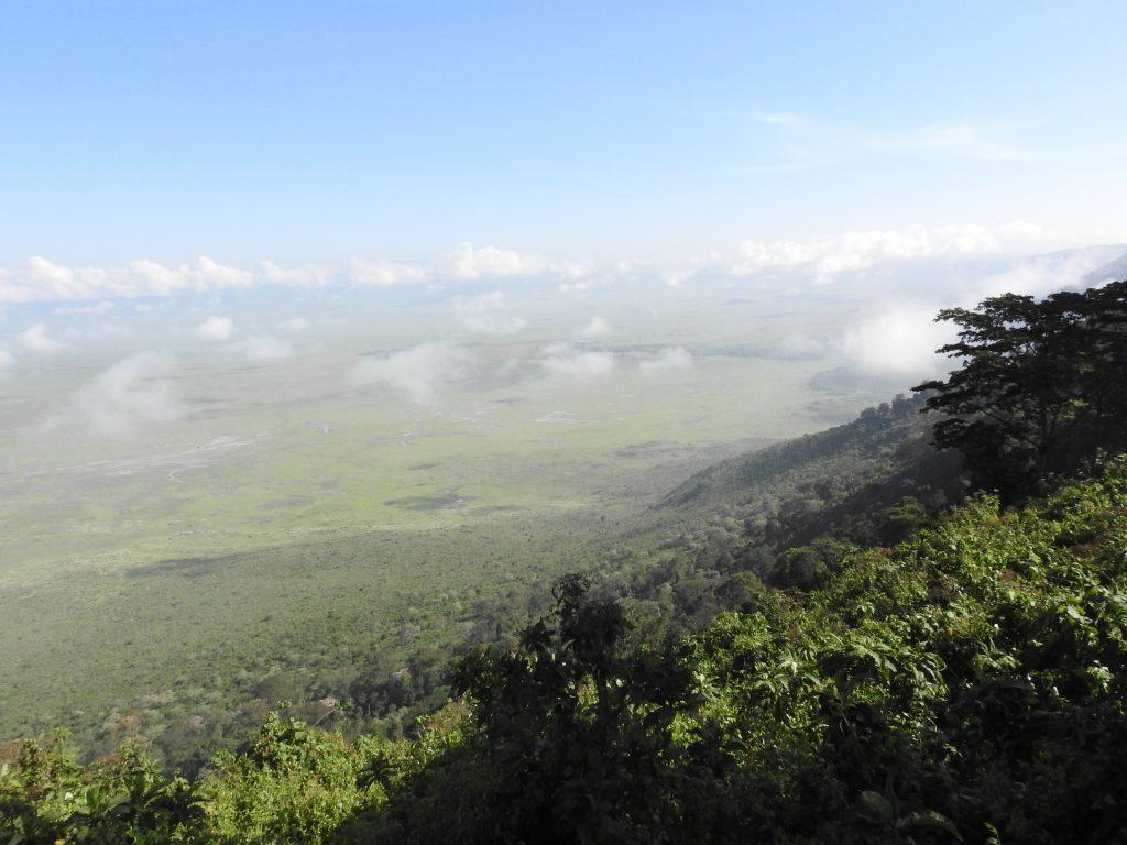 Présentation Safari Manyara Ngorongoro Tarangire